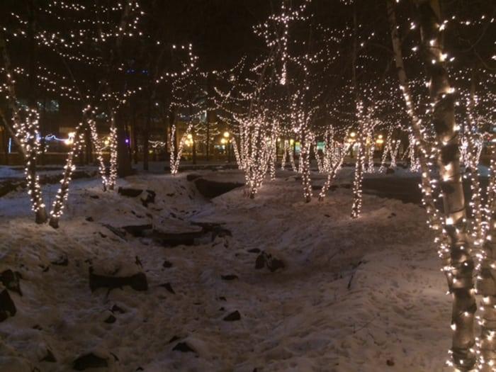 Mears-park-winter