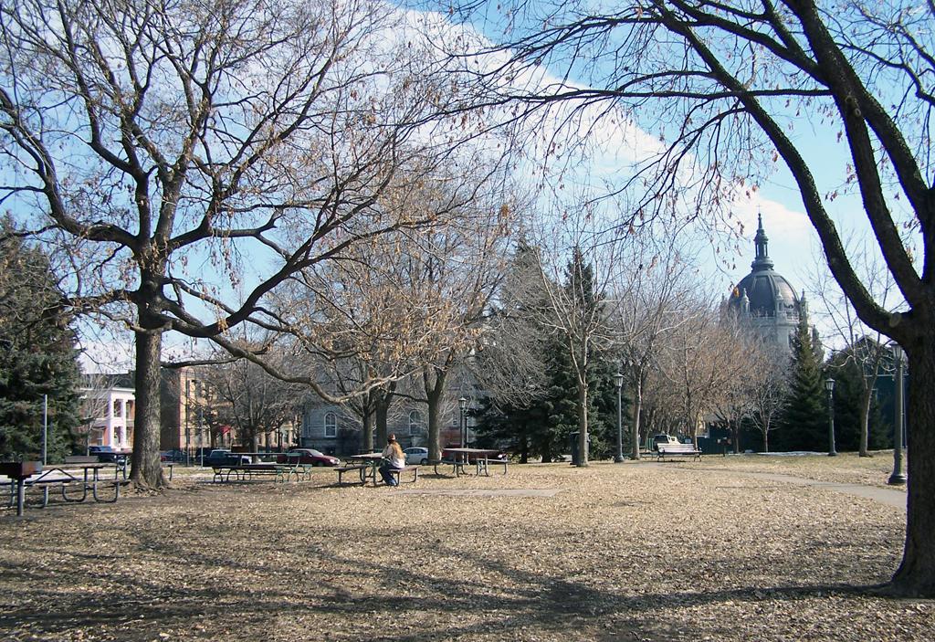 Boyd Park (Photo: Patricia Bour-Schilla)