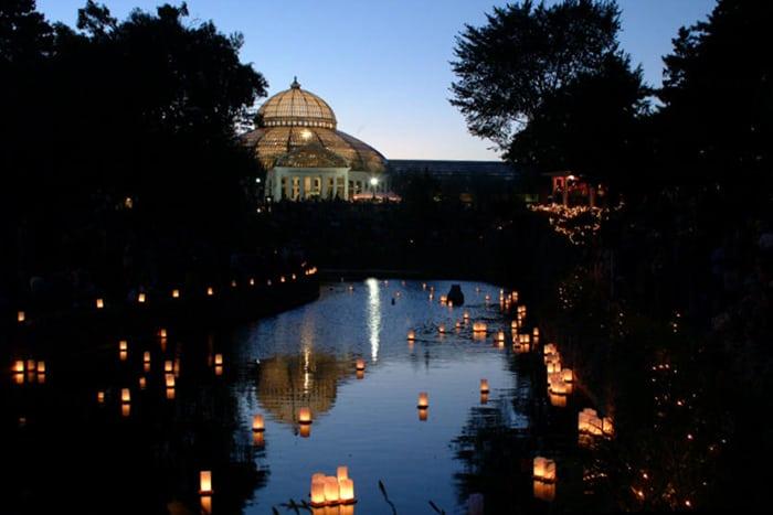 Japanese-Lantern-Lighting-Festival