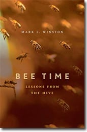 bee-time-cover